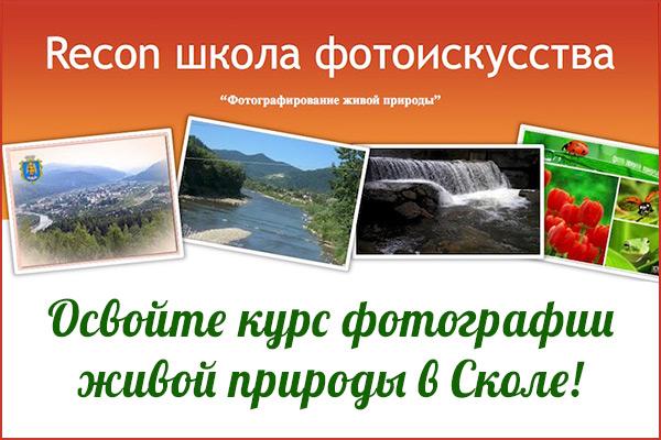Освойте курс фотографии живой природы